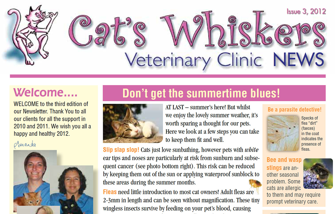 Cat's Whiskers 2012 Newsletter