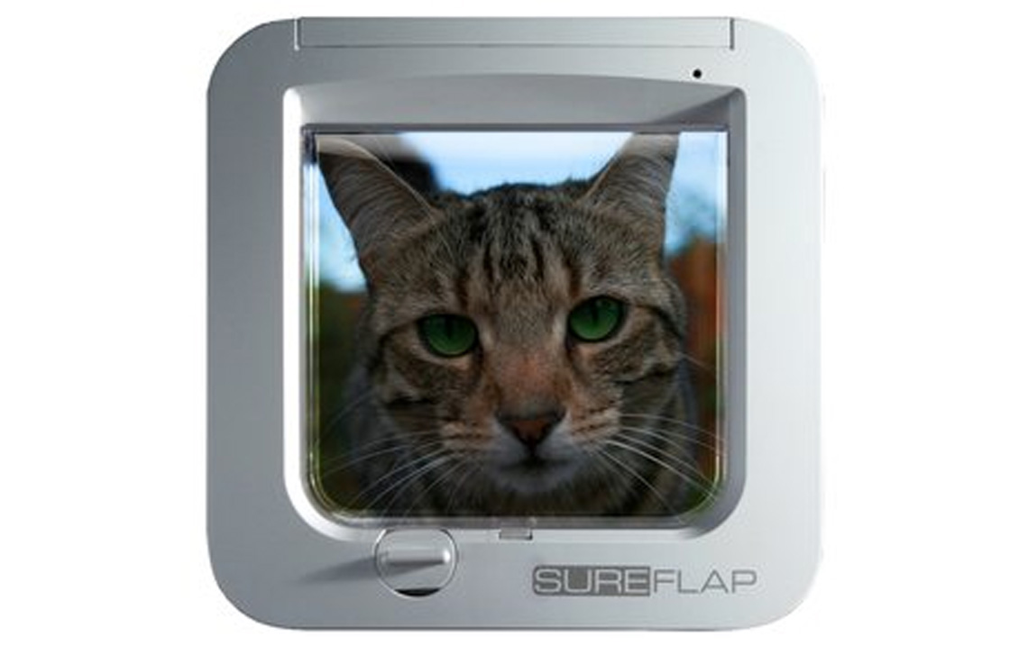 SureFlap Microchip Cat Flap & 25% off Microchipping