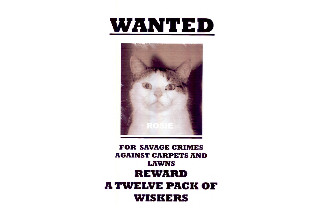 Rosie – WANTED – for savage crimes…