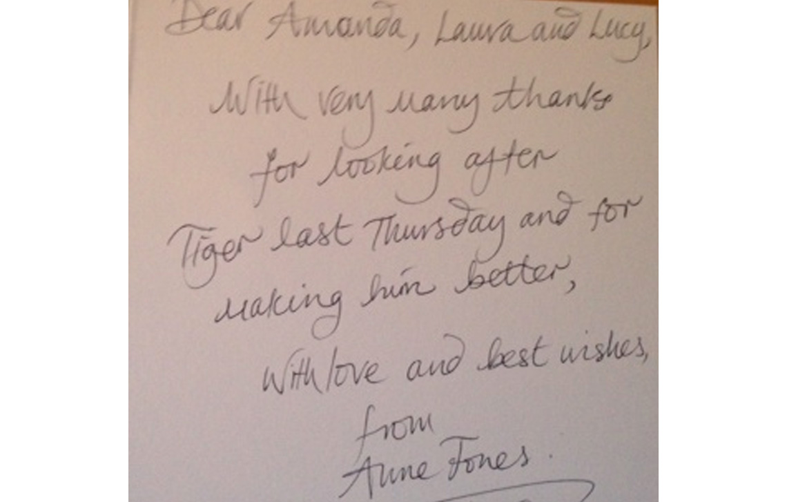 Thank you from Anne J. & Tiger