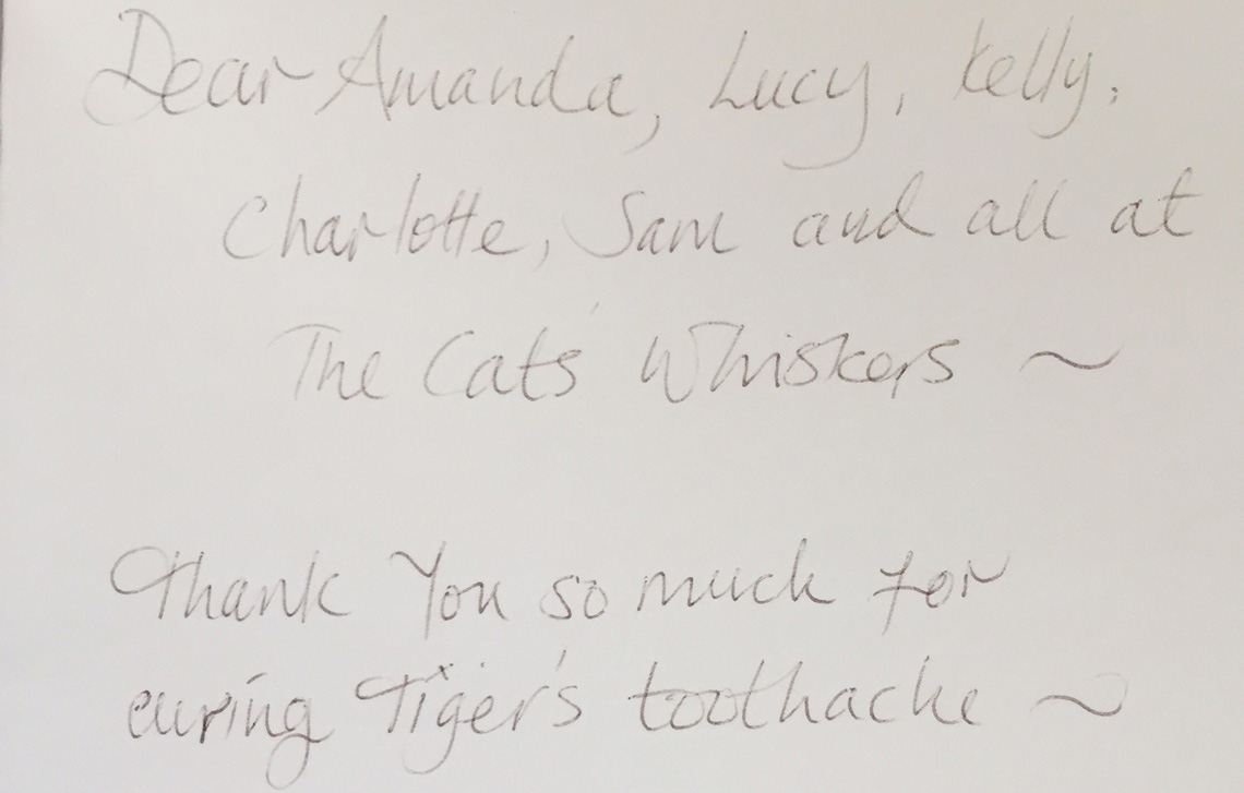 Thank you from Tiger Jones