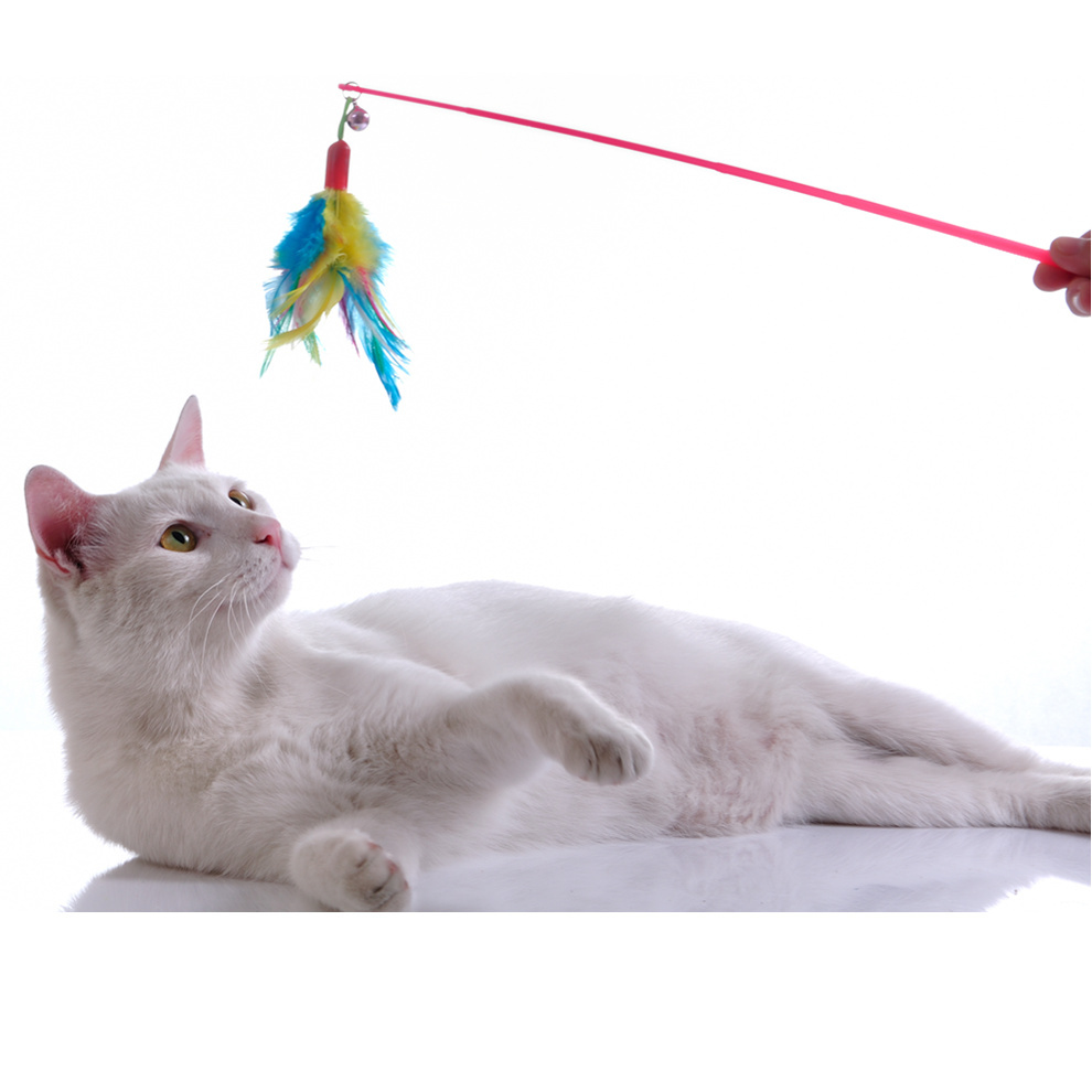 cat-feather-toy