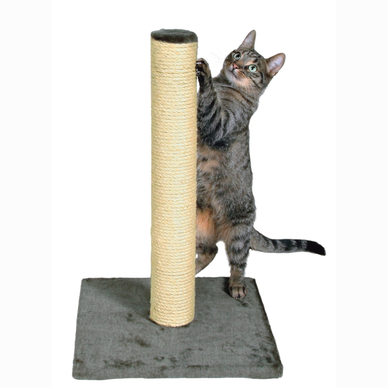 cat-scratching-post